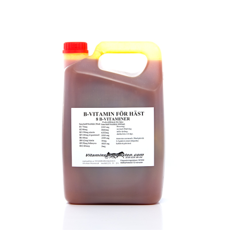 B VITAMIN 8 KOMPONENTS HUND   pH-reglerad : 7.35