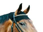 Back On Track Nackskydd häst